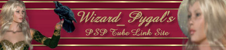 Wizard Pygal Banner