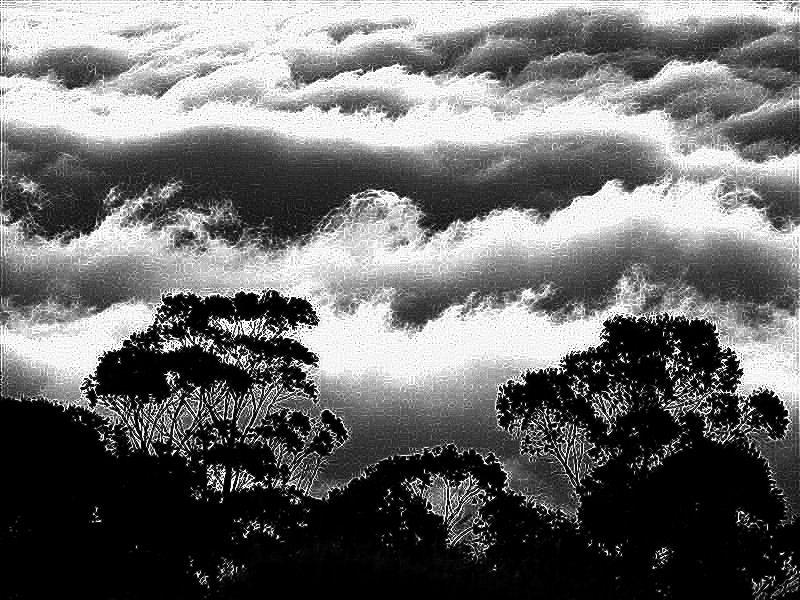 GraphicsByLiz_Haleakala_National_Park_Maui_Hawaii_Feb2008