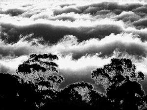 GraphicsByLiz_Haleakala_National_Park_Maui_Hawaii_Feb2008_thumbnail