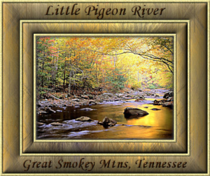 GraphicsByLiz_Little_Pigeon_River_Tennessee